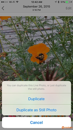 Duplicate-Live-Photos-576x1024